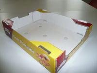 Kartonformate-SOA300-02